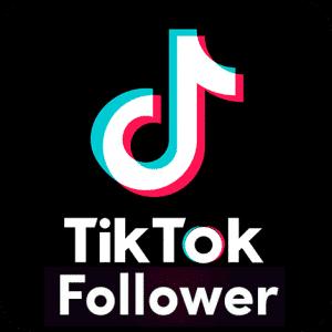 comprar seguidores tik tok